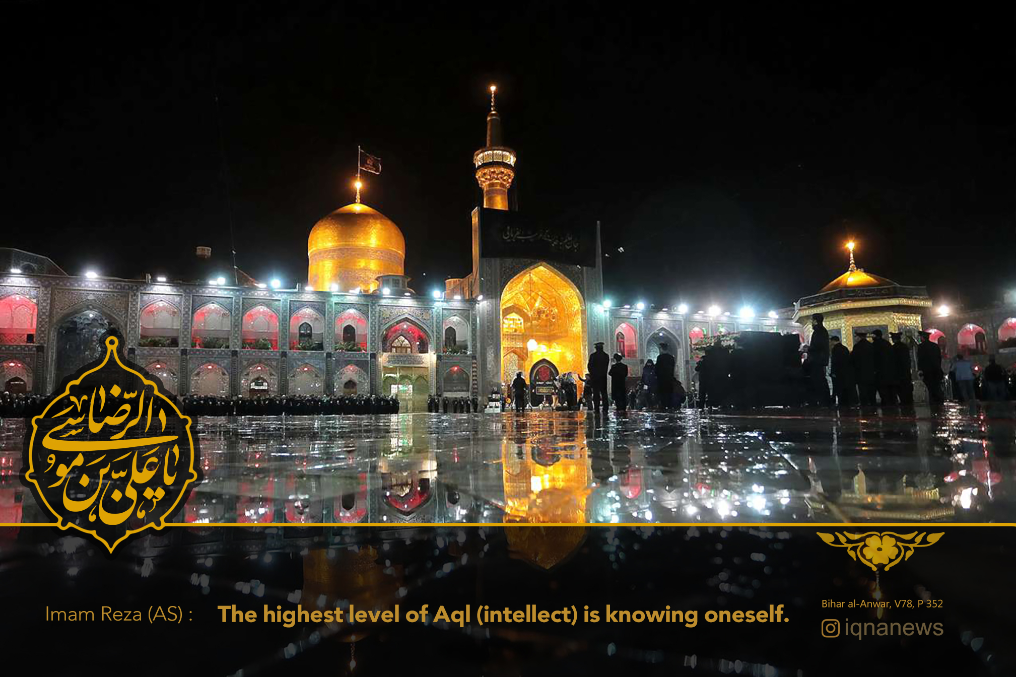 Highest Degree of Intellect in Imam Reza's (AS) Words
