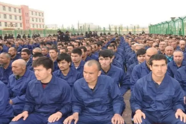 'Others should join Turkey and defend China's Uighurs'