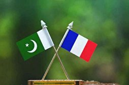 France Angry at Pakistani Minister's Comment