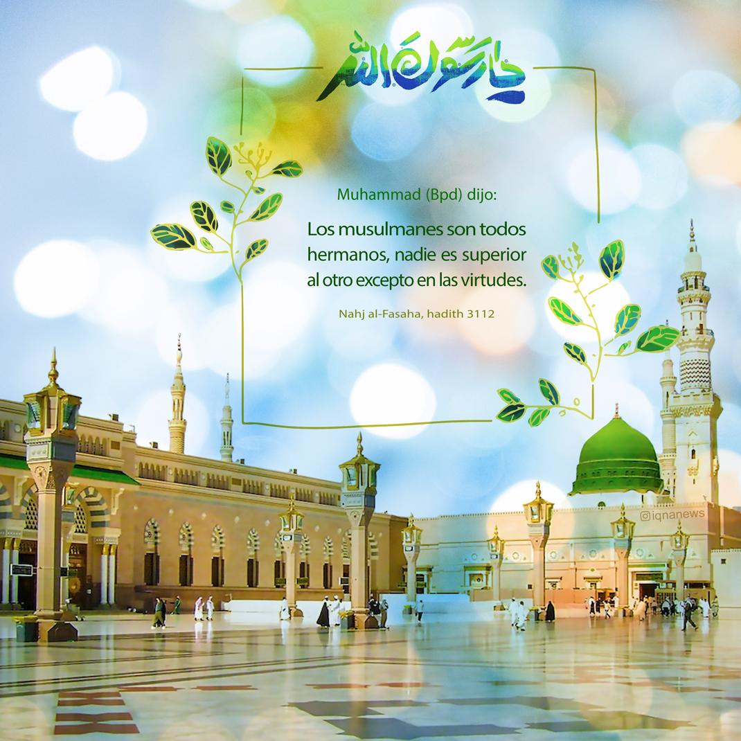 Hermandad en el islam
