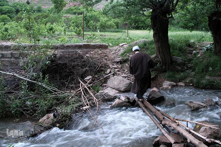 طلبه ای کشاورز اما قرآنی در روستایی محروم/ گردوها نیز وقف کار قرآنی شدند